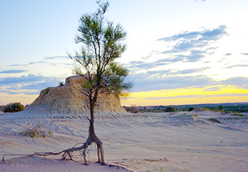 Walls of China 1, LaKE MUNGO